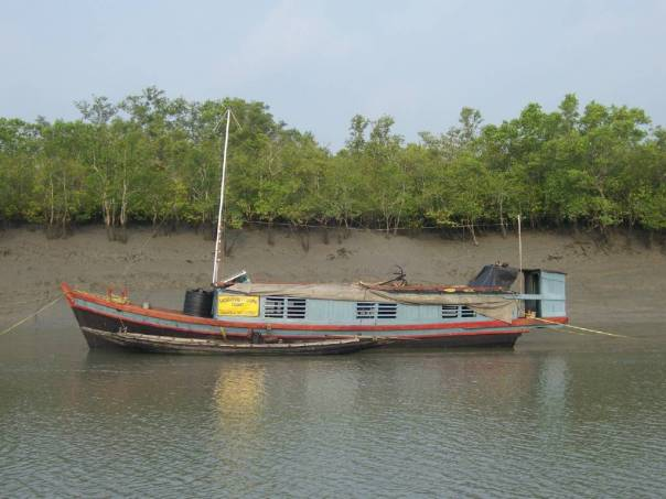 Steamer to reach Sundarbans National Park