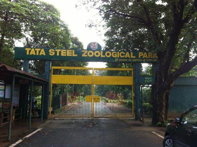 Tata Steel Zoological Park Jamshedpur